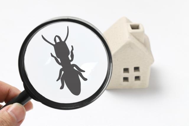 虫眼鏡とシロアリとミニチュアの家